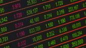 Daianu: Problema Romaniei este de a nu iesi de pe pietele de capital