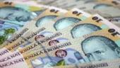 Guvernul va subventiona diferenta dintre dobanda creditelor fermierilor si cea anuntata de CE