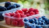 Romalimenta: Consumatorii nu pot verifica daca un produs este bio sau traditional. Producatorii pot spune orice minciuna