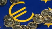 Degradarea zonei euro ar putea dura 10 ani - raport Ernst&Young