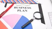 Programul SRL-D 2014 s-a incheiat. Tinerii nu mai pot depune planuri de afaceri