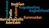 Noi cuvinte din dictionar, culese de pe Twitter - selfie si euromaidan, printre sugestii
