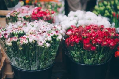 Vanzatorii de flori fac afaceri de aproximativ 100 de milioane de lei in aceasta perioada
