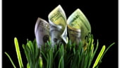 Foamea de bani a bancilor creste dobanzile la depozite. Vezi cele mai atractive oferte
