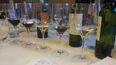 Cine se bate pentru aur la concursul national de vinuri