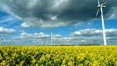 DIRIO ECONMICO: Martifer achizitioneaza cu 91 de milioane de euro parcuri eoliene in Germania
