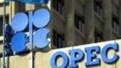 Rusia vrea o relatie mai stransa cu OPEC