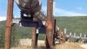 Rusia si Turcia ar putea coopera in proiectul South Stream pe probleme de marketing