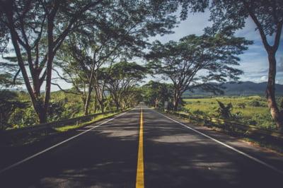 Autostrada Sibiu-Pitesti ar putea primi Acordul de Mediu pana la sfarsitul acestui an