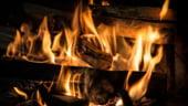 Romsilva estimeaza ca romanii vor cumpara 1,7 milioane mc de lemn de foc pana la finele anului
