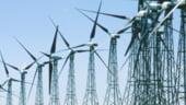 Bula speculativa din domeniul energiei regenerabile va exploda