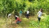 Ciolos: Invatamantul agricol va putea fi reformat dupa 2014