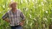 Astazi este ultima zi in care fermierii pot depune cererea pentru plata la hectar