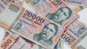 UE intentioneaza sa ajute Ungaria sa faca fata crizei financiare
