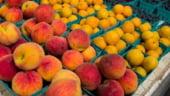 Rusia pregateste riposta la sanctiunile UE si SUA: Limitarea importurilor de fructe si pui