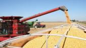 Romania a exportat aproape doua milioane de tone de produse agroalimentare, in primele patru luni