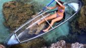 Barca transparenta: Senzatii tari de snorkeling, fara efort
