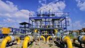 Putin: Rusia ar putea deveni un ''pivot'' in livrarile de gaze catre Europa si Asia