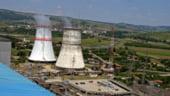 Nita prezinta luni rezultatele ofertei publice Nuclearelectrica