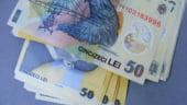 Bancile se vor orienta catre creditarea in lei - Oficial BCR