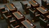 Exportul de bustean in afara UE va fi interzis pentru 10 ani