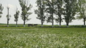 Fermieri suspectati de fraude cu bani europeni - cum au reusit sa obtina mii de euro