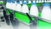 Productia totala de lapte de vaca a scazut, in 2012, cu 4,4%