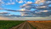 Familiile bogate din Germania investesc in terenuri agricole, inclusiv in Romania