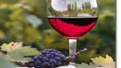 Peste 100 milioane de euro au fost investiti in sectorul viticol
