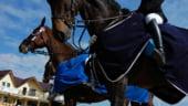 Ozana Moraru: Prin Salonul Calului am facut mult mai cunoscuta echitatia