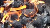 Raport AIE: Carbunele va devansa in zece ani petrolul