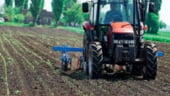 Agricultura primeste 3 mld euro anual, bani care nu sunt folositi eficient