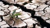 Seceta de idei in agricultura: Cum sa combatem lipsa irigatiilor?