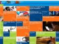 Intel lanseaza webzine-ul iQ