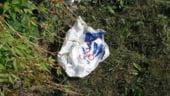 Pungile de plastic gratuite ar putea fi interzise pana la sfarsitul acestui an