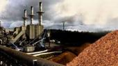Investitie de peste 11 milioane de euro intr-o centrala electrica pe biomasa, in Horezu