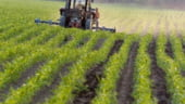 Libanezii, atrasi de Romania: Investitii in turism si agricultura