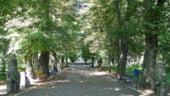 Restaurarea parcului de langa Opera costa 2 mil euro
