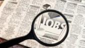 Grecii si spaniolii cauta locuri de munca in Germania