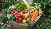 Romania nu importa fructe si legume eco, dar exporta peste 2.000 de tone in UE