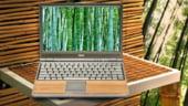 Bambus pentru notebook