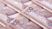 Islanda ar putea alege ca moneda dolarul canadian in loc de euro