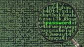Cele mai mari amenintari online, in 2013
