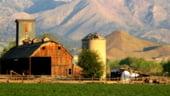 Fermierii romani primesc un avans de 50% din sprijinul pe suprafata