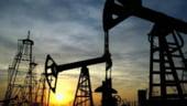 Importurile de petrol au scazut cu 23,6%, in primele cinci luni ale anului