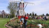 Piata muncii din Olanda ramane inchisa pentru romani si dupa 2009