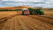 Fermierii cer fonduri europene pentru o suprafata mai mare decat cea negociata cu UE