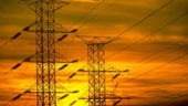 Compania Electrica SA va fi divizata inainte de privatizare