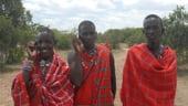 Telefonia mobila cucereste Africa: Cresteri de 44% pe an
