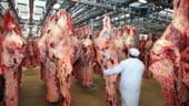 Rusia consolideaza controlul asupra importurilor de carne de vita din UE